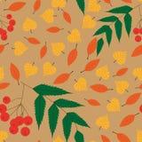 Pattern autumn Stock Photo