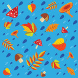 Pattern autumn. Seamless texture vector Royalty Free Stock Images