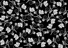 Pattern background. White floral pattern on black background Stock Image