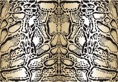 Pattern background clouded leopard stock illustration