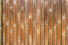 Bamboo Texture, Wood - Material Stock Image