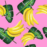 Pattern of bananas and green leaves on a pink. Tropical background. Stock Images