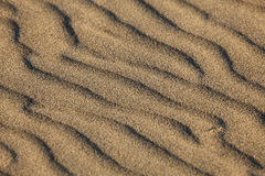 Pattern in the beach sand Stock Photography
