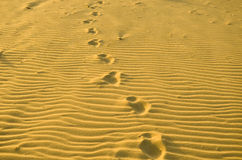 Pattern in the beach sand and footprints Stock Photo