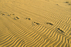 Pattern in the beach sand and footprints Stock Image