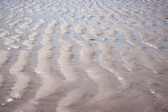 Pattern Beach at Zeeland, The Neterlands Stock Images
