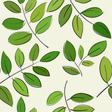 Pattern with beautiful branches with green leaves. Seamless pattern with beautiful branches with green leaves Stock Photo