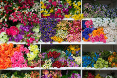 Pattern of beautiful flowers Royalty Free Stock Photography