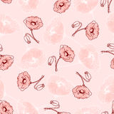 Pattern of beautiful poppy flowers. Seamless pattern of beautiful dark red poppy flowers on a pink background in pink pastel colors. Vector illustration drawn by Stock Images