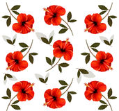 Pattern of beautiful red flowers. Stock Photography