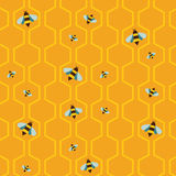 Pattern of the bee on honeycombs background Royalty Free Stock Image