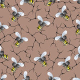 Pattern of a bee. Royalty Free Stock Images