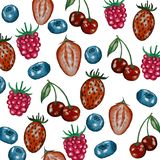 Pattern with berries. royalty free illustration