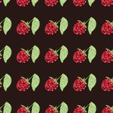 Pattern berry mix Royalty Free Stock Images