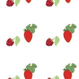Pattern berry mix Stock Photography