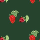 Pattern berry mix Royalty Free Stock Photo