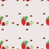 Pattern berry mix Stock Image