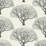 Pattern of a big tree Royalty Free Stock Photos