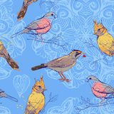 Pattern with birds and mandala background Royalty Free Stock Image