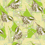 Pattern with birds Royalty Free Stock Photo