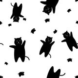 The pattern of black cats with butterflies on a white background Stock Image