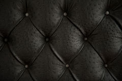 Pattern of black genuine leather upholstery. Pattern of black genuine leather upholstery with buttons Stock Photos