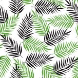Pattern with black and green palm leaves Stock Photos