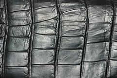 Pattern of black leather - can. Pattern of black leathee - can  be used as background Royalty Free Stock Image
