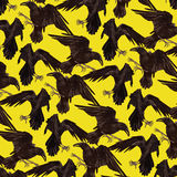 Pattern with black ravens. Stock Photography