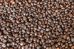 Pattern black roasted coffee bean texture and background Royalty Free Stock Photos
