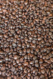 Pattern black roasted coffee bean texture and background Stock Photos