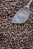 Pattern black roasted coffee bean texture and background Royalty Free Stock Images