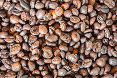Pattern black roasted coffee bean texture and background Royalty Free Stock Photo