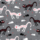 The pattern of black and white cats Royalty Free Stock Images