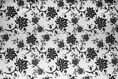 Pattern. Black and white floral pattern Stock Image