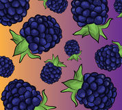 Pattern with blackberries Royalty Free Stock Images