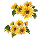 The pattern of blooming yellow flowers sunflower painted in watercolor Royalty Free Stock Photos