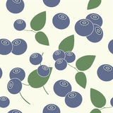 Pattern blueberries Royalty Free Stock Photo