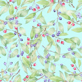 Pattern of blueberries Royalty Free Stock Images