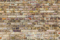 Pattern of brick wall with harmonic colors Stock Image
