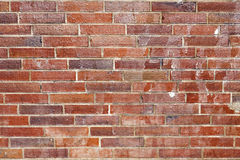 Pattern of bricks in a harmonic row Stock Photography
