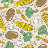 Pattern  with  broccoli, corn and potato. Stock Photography