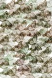 Pattern with butterflies stock illustration