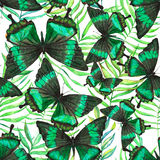 Pattern with butterflies. Colorful hand drawn seamless pattern with watercolor palm leaves and butterflies on the white background Stock Illustration
