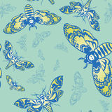 Pattern with butterflies. Seamless pattern with beautiful butterflies on background Stock Image