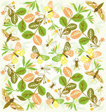 Pattern butterfly flowers Stock Photography