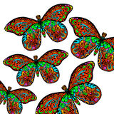 Pattern of butterfly Stock Image