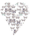 Pattern butterfly heart shape Royalty Free Stock Image