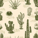 Pattern of the cactus Stock Photos