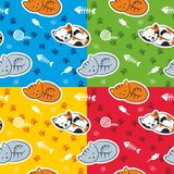 Pattern with cats. Seamless pattern with cats in four color schemes Stock Images